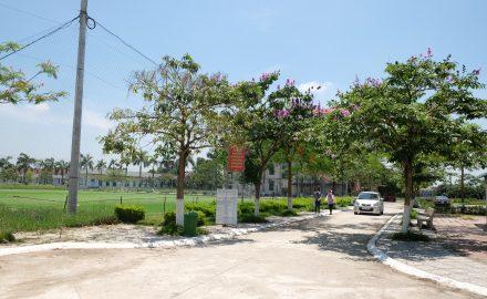 Lối vào khuôn viên trường với không gian xanh