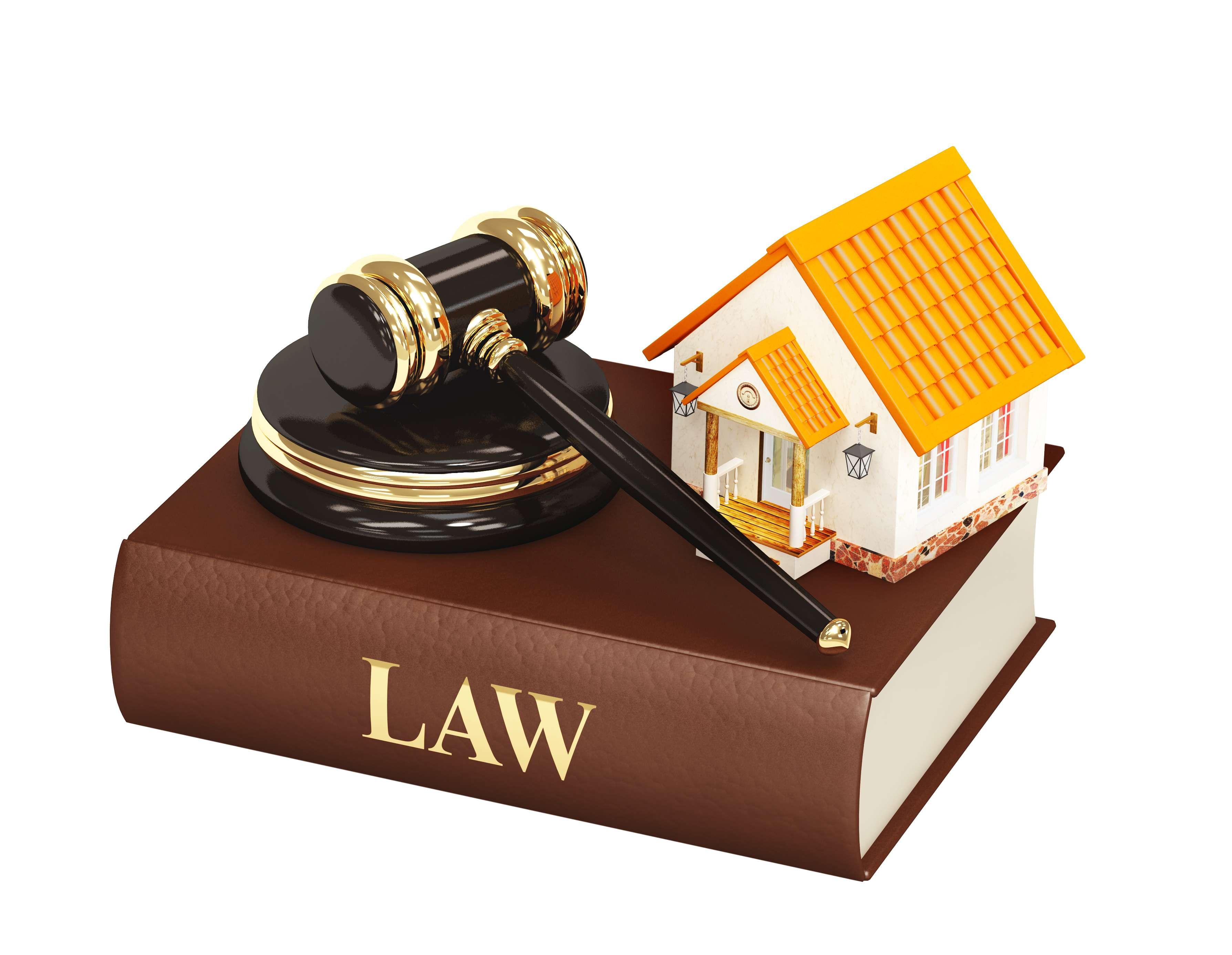 Dịch vụ pháp lý - Một ngành mới nhưng đầy triển vọng