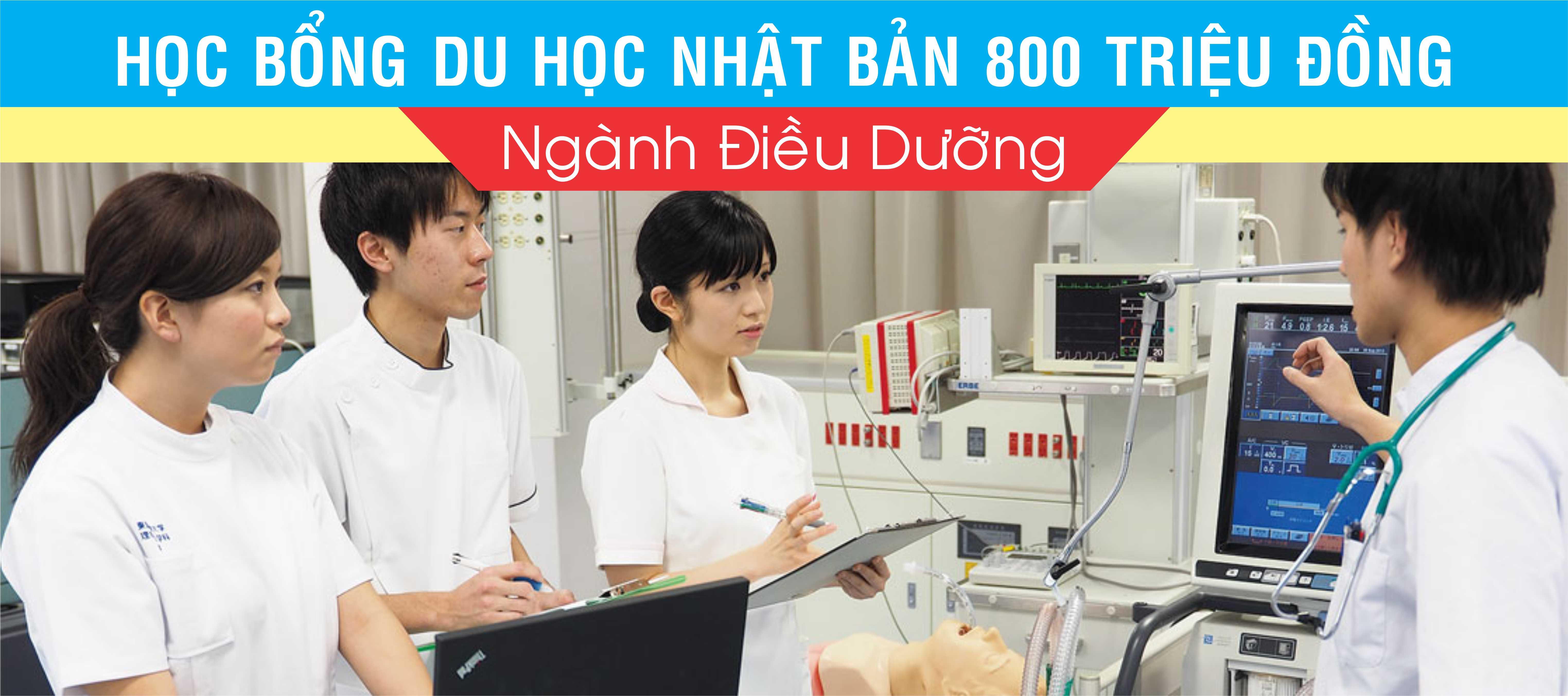 hoc-bong-dieu-duong-800-trieu