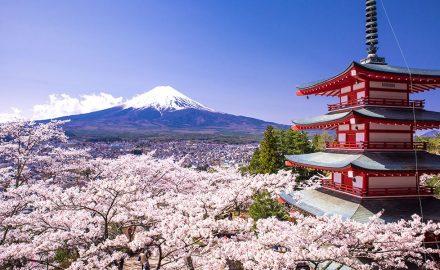Học bổng toàn phần chương trình kiến tập và tu nghiệp sinh tại Nhật