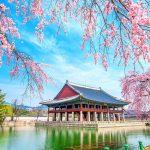 Khai trương và cắt băng khánh thành Viện Văn hóa ngôn ngữ Hàn Quốc