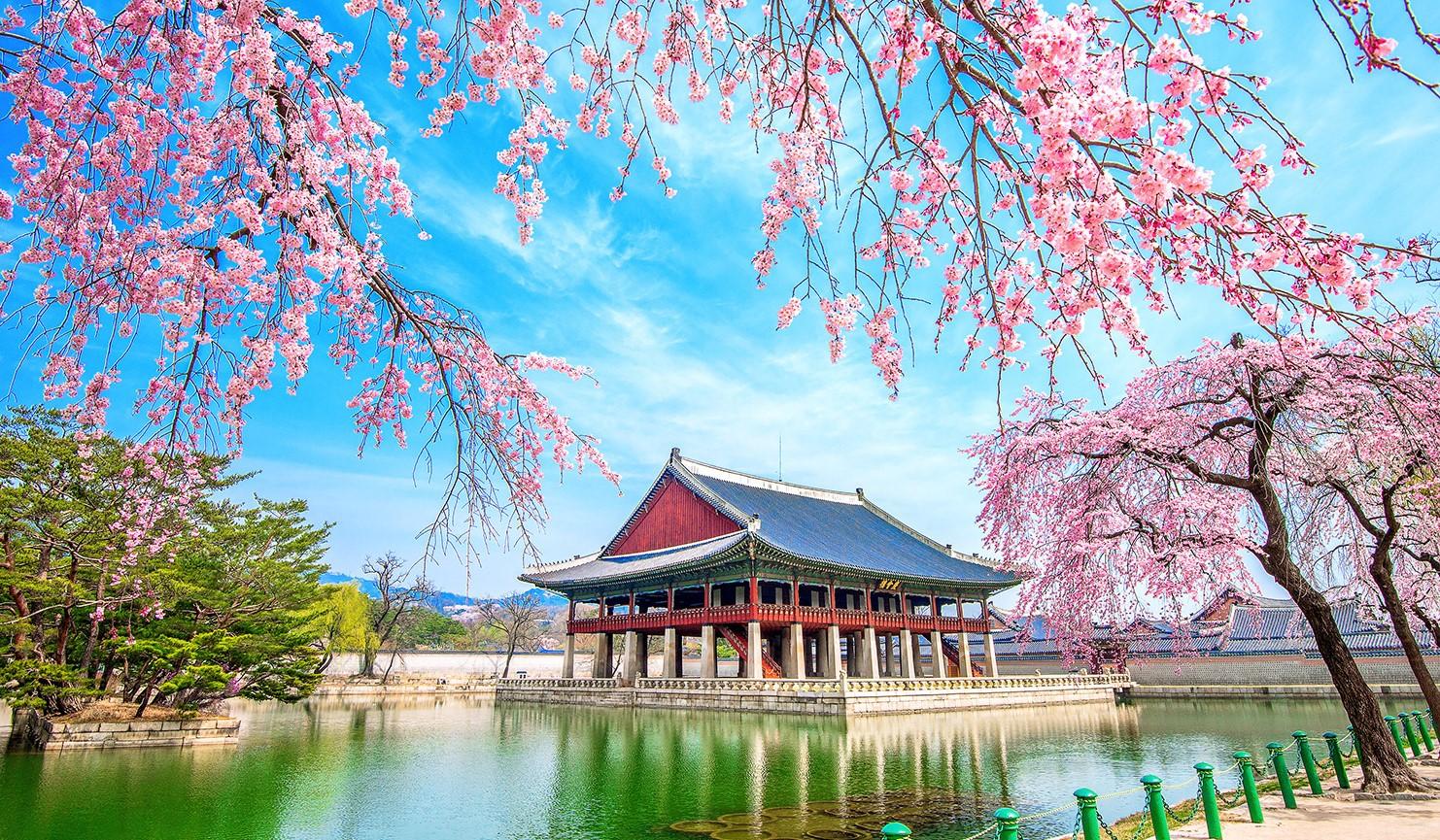 Lễ Khai trương và cắt băng khánh thành Phân hiệu 5 - Viện Văn hóa ngôn ngữ Hàn Quốc - Đại học Quốc gia Incheon