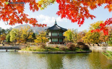 Bí kíp để học thật giỏi ngôn ngữ Hàn ?