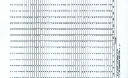 Đáp án đề thi môn Ngoại Ngữ THPTQG 2019 – Tất cả các mã đề
