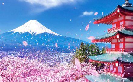 Khóa đào tạo Kỹ năng và Định hướng mục tiêu học tập Theo mô hình chuẩn Nhật Bản