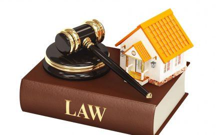 Dịch vụ pháp lý – Một ngành mới nhưng đầy triển vọng